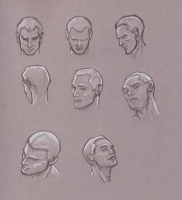 more loomis head sketches greg tatum