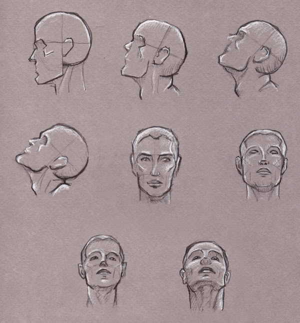 How to Draw the Head from Any Angle - YouTube