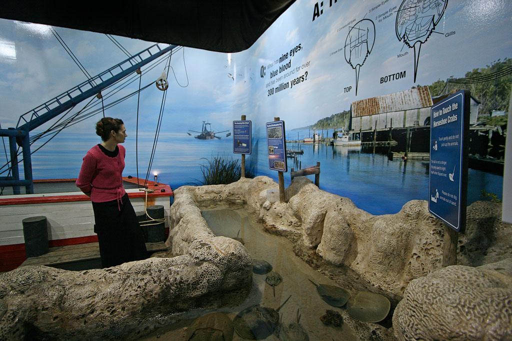 Shrimp Boat Exhibit Greg Tatum