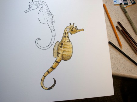 Seahorse Illustration Progress